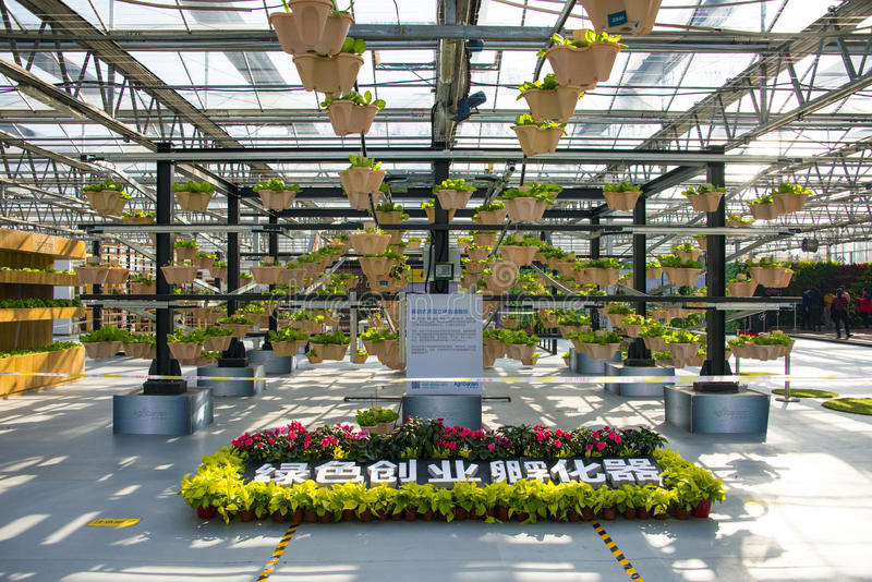 Asia China, Beijing, agricultural carnival,Greenhouse planting ,. Beijing agricultural carnival is a new exploration and practice to expand the form, development stock images