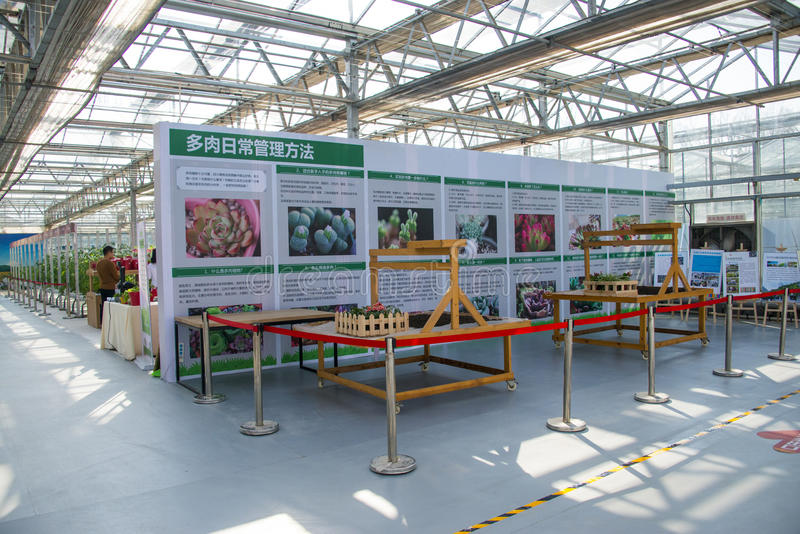 Asia China, Beijing, agricultural carnival,Indoor exhibition hall,. Beijing agricultural carnival is a new exploration and practice to expand the form stock photos