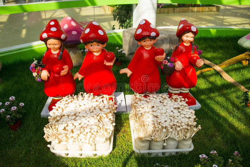 Asia China, Beijing, agricultural carnival, modern architecture, indoor exhibition hall, Mushroom cap, doll, fresh mushroom. Asia China, Beijing agricultural stock photography