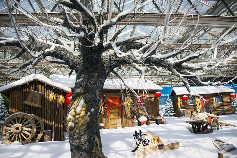 Asia China, Beijing, agricultural carnival, modern architecture, indoor exhibition hall, Wooden house,snow scene. Asia China, Beijing agricultural carnival royalty free stock image