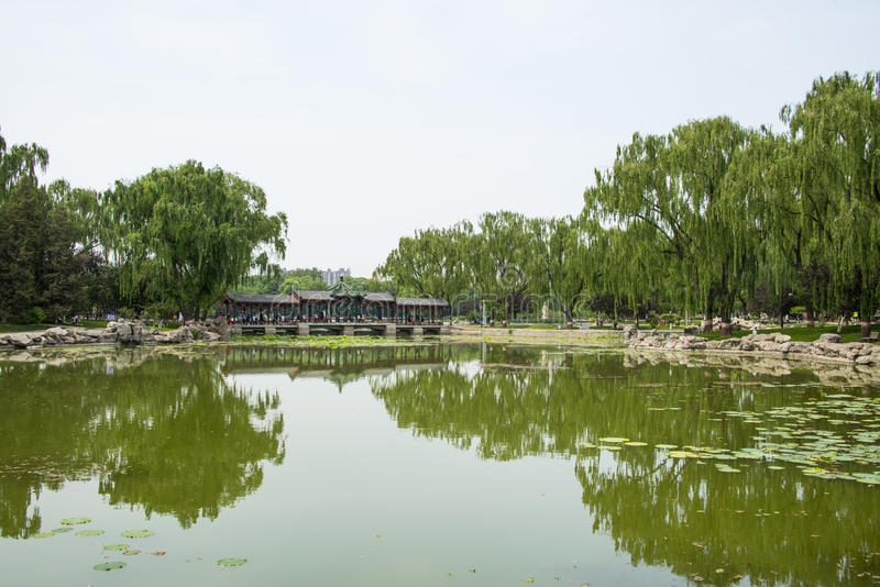 Asia China, Beijing, Longtan Lake Park, Summer landscape, Lake view, the long corridor royalty free stock photography