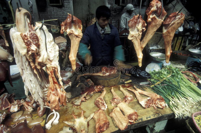 ASIA CHINA SHENZEN. The animal Market in the city of Canton or Guangzhou in the north of Hongkong in the province of Guangdong in china in east asia stock image