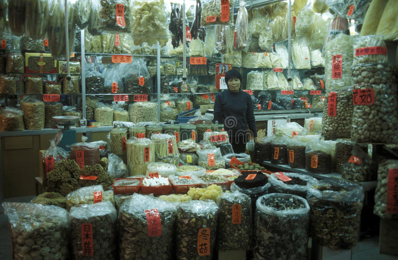 ASIA CHINA SHENZEN. The Market in the city of Canton or Guangzhou in the north of Hongkong in the province of Guangdong in china in east asia royalty free stock image
