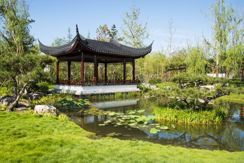 Asia China, Wuqing, Tianjin, expo verde, pabellón, galería fotos de archivo