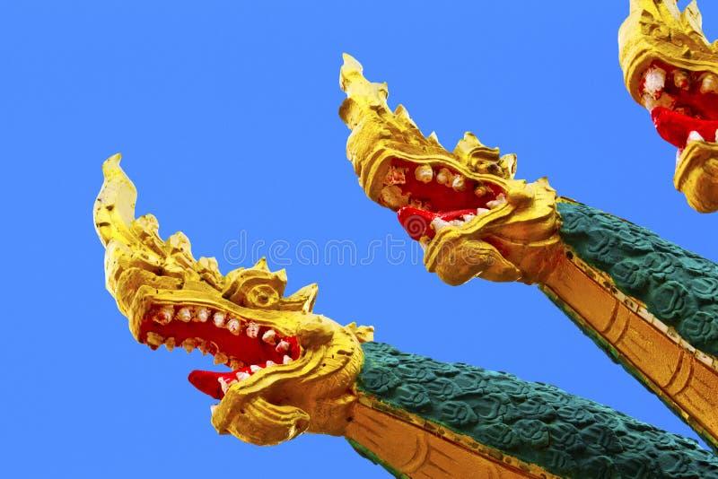 asia drakehuvud arkivbild