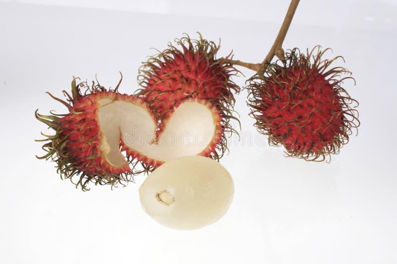 Asia fruit rambutan royalty free stock photo
