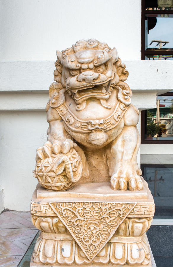 Asia lion stock image
