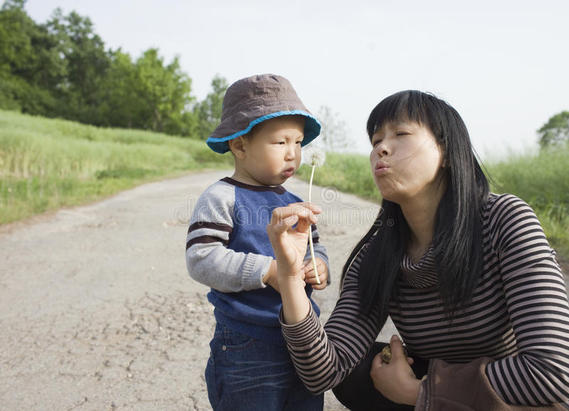 Download Asian Baby Boy Playing Dandelion With His Aunt Royalty Free Stock Images - Image: 19619699