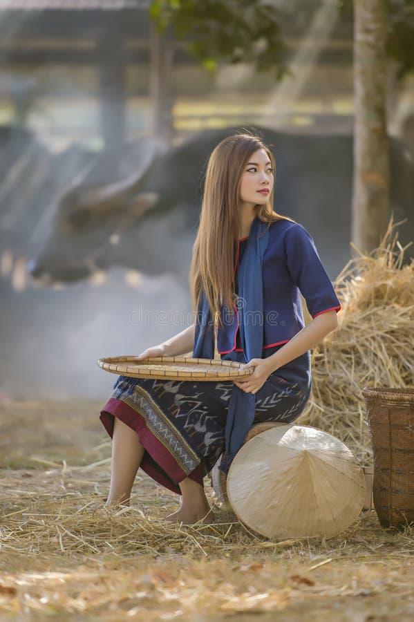Asian beautiful girl winnowing rice separate between rice and rice husk royalty free stock photo
