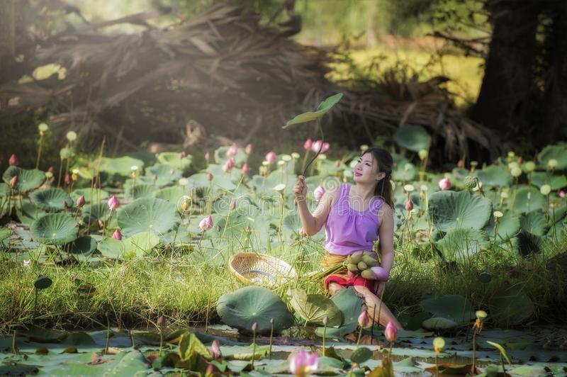 Asian beautiful woman walking in lotus field. stock photo