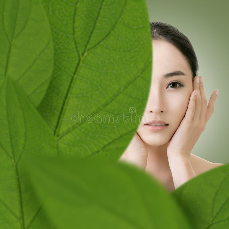 Asian beauty face royalty free stock image