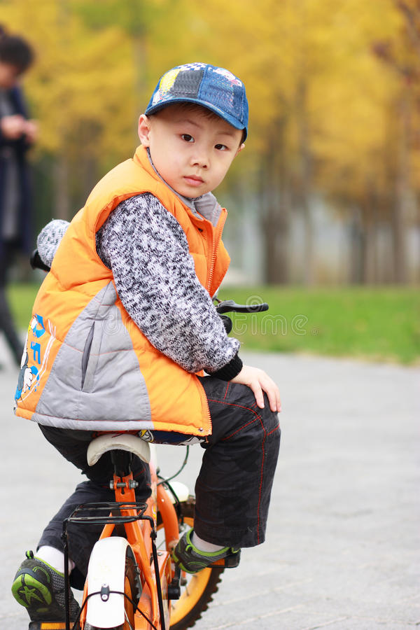 Asian boy at autumn stock image