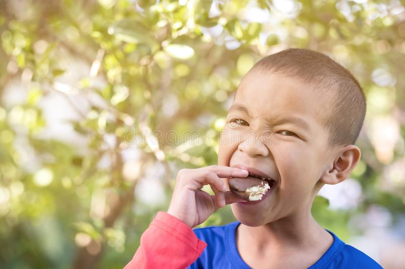 An Asian boy is eating a delicious chocolate cookie. Sweet, food, white, dessert, homemade, sugar, cake, fresh, tasty, dish, closeup, brown, baker, bakery royalty free stock photography
