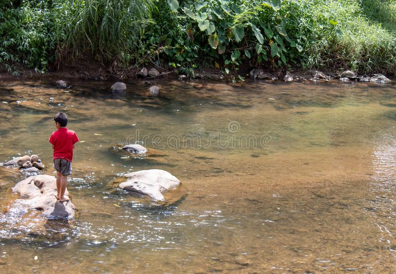Asian boy looking at fish in a stream. royalty free stock images