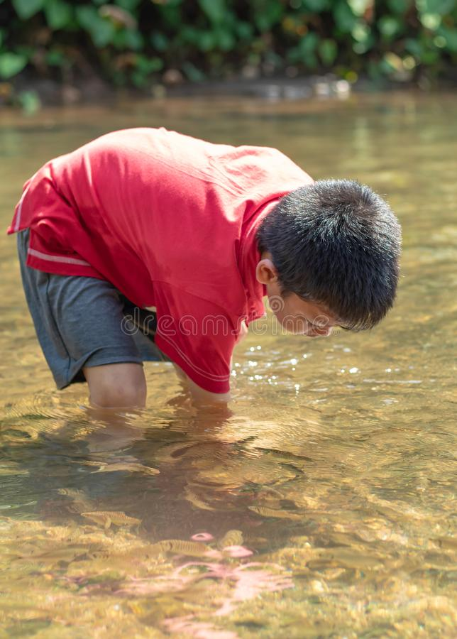 Asian boy looking at fish in a stream. stock image