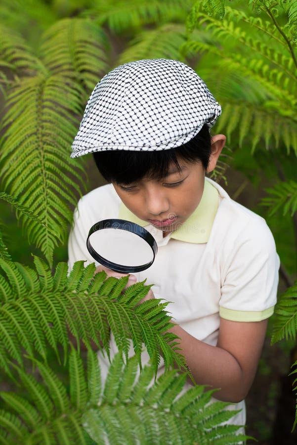Asian boy magnifying stock image