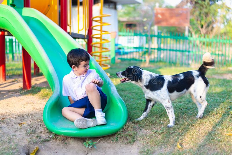Asian boy playing with his dog in playground under sun light stock photo