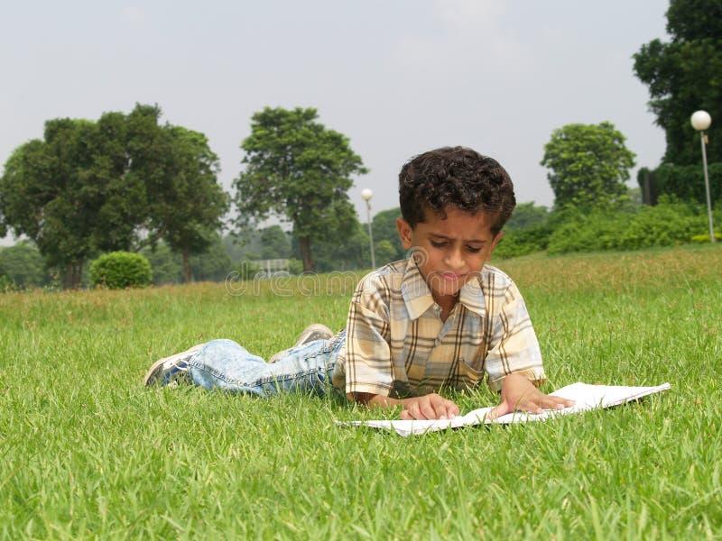 Asian boy studying royalty free stock image