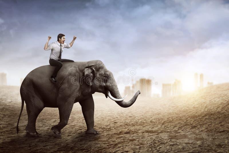 Elephant walking in desert stock illustration ...
