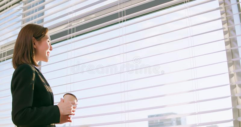 Successful asian business woman stock image
