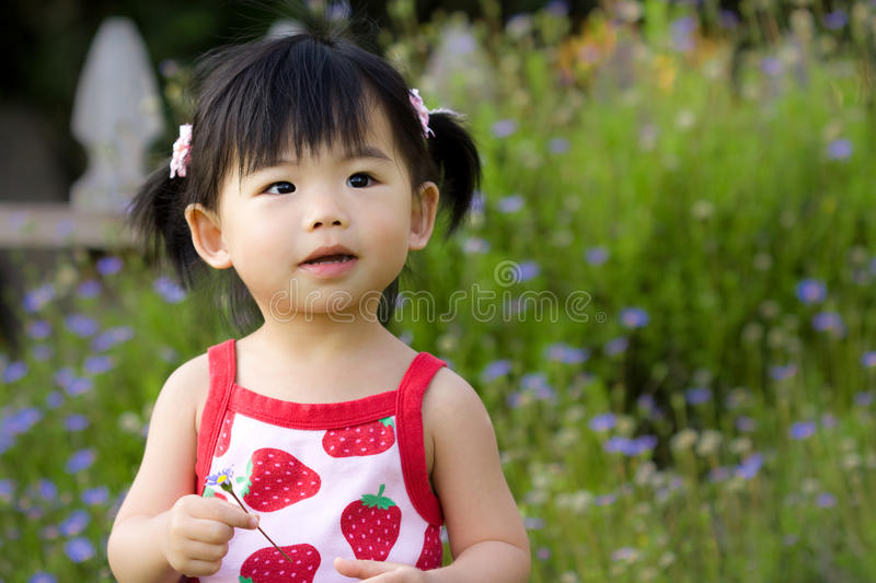 Download Asian child stock photo. Image of emotion, smile, growth - 11383712