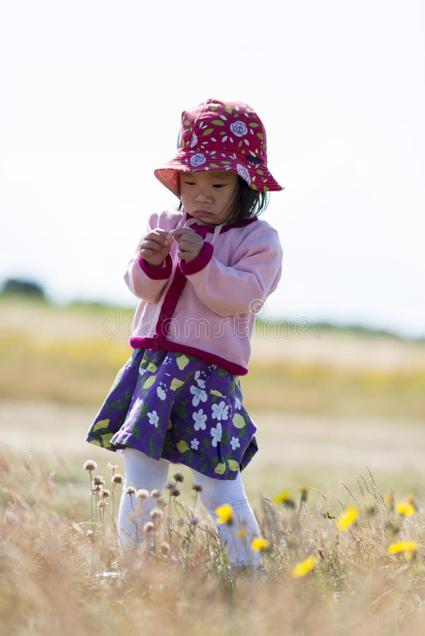 Asian Child stock image
