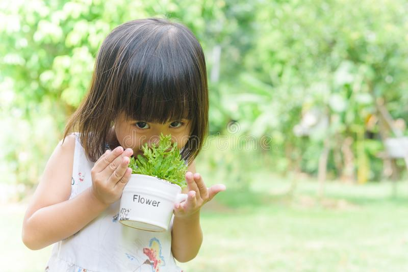 Asian child girl smelling small plant with a pot in her hands royalty free stock photography