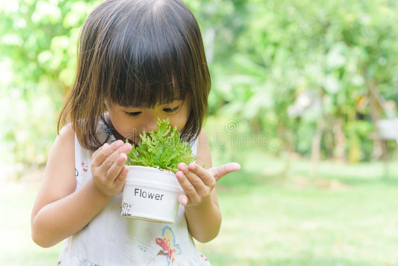Asian child girl smelling small plant with a pot in her hands royalty free stock images