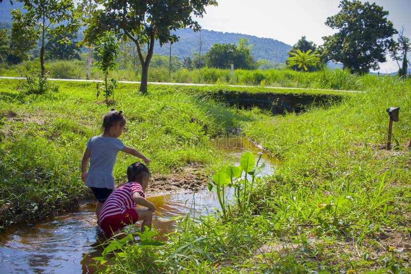 Asian Children playing  barefoot in stream water, catch a fish play mud and sand. High resolution image gallery royalty free stock photos