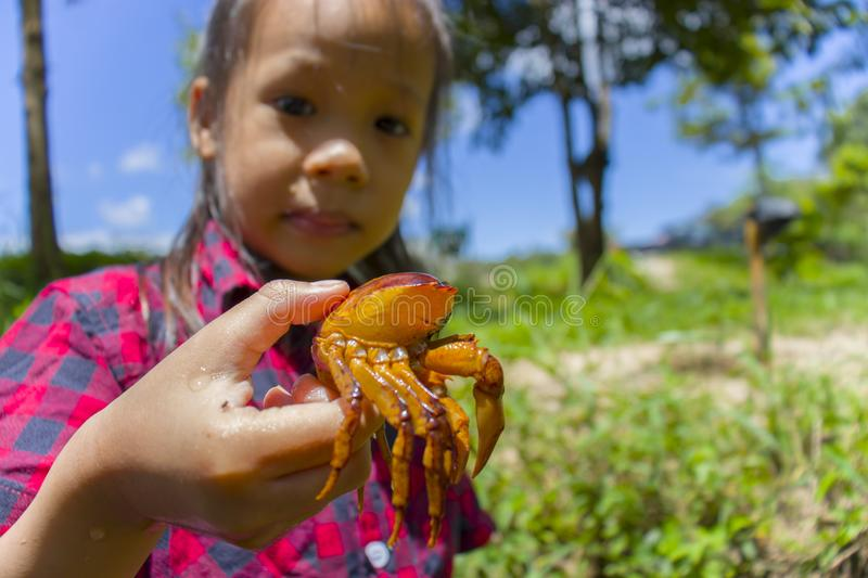Asian Children playing  barefoot in stream water, play mud and sand. and holding a crab. High resolution image gallery stock image