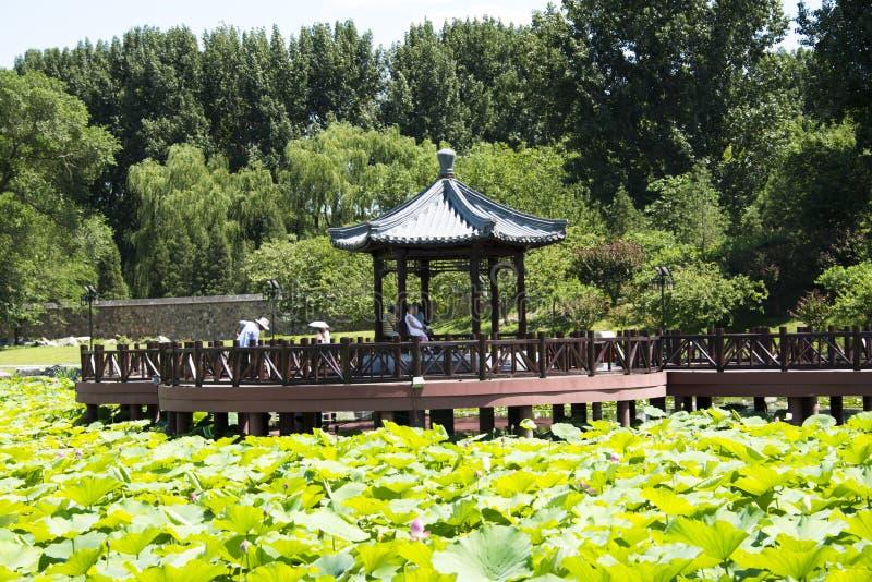 Asian China, Royal Garden, Old Summer Palace, Jiuqu Bridge Editorial ...