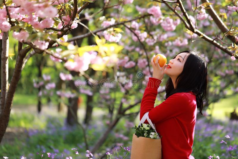 Asian Chinese freedom woman smell fruit under flower tree in nature in spring outdoor stock photos