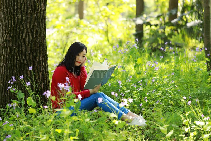 Beautiful young girl reading book while sitting under giant oak royalty free stock image