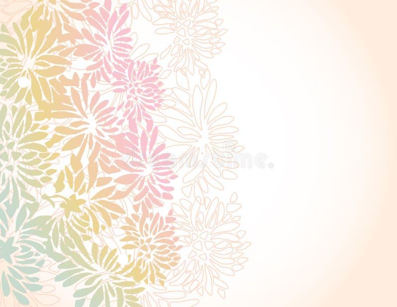 Asian chrysanthemum flower border background royalty free illustration