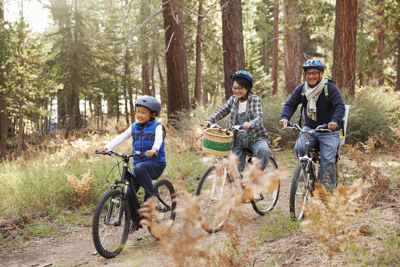Asian couple and son cycling in a forest, side view stock photography