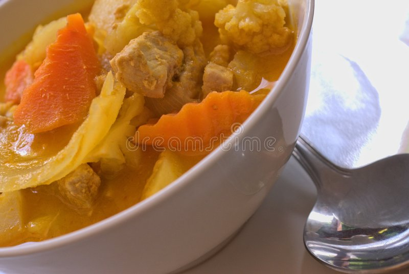 Download Asian Curry stock photo. Image of spoon, vegetables, meat - 5815796
