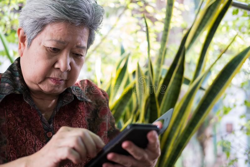 elder woman holding mobile phone in garden. elderly female texting message, using app with cellphone. senior use smartphone to co stock photography