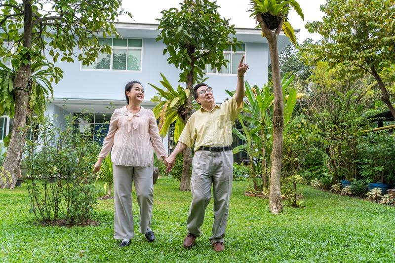 Asian elderly couples are walking inside the backyard stock photo