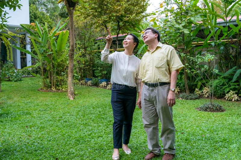 Asian elderly couples are walking inside the backyard stock photography