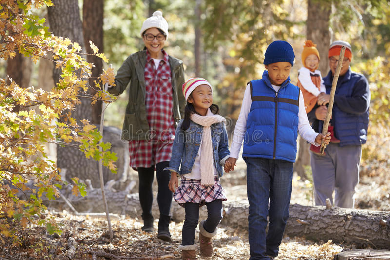 Asian family of five enjoying a hike in a forest, close up stock photo