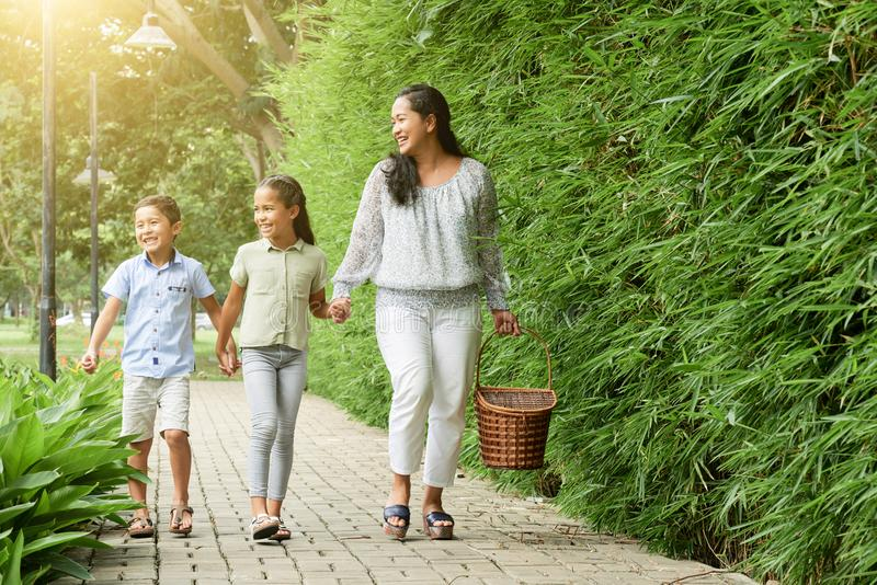 Asian family walking to picnic in park stock image