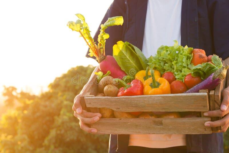 Asian farmer carry full basket of organic product stock photo