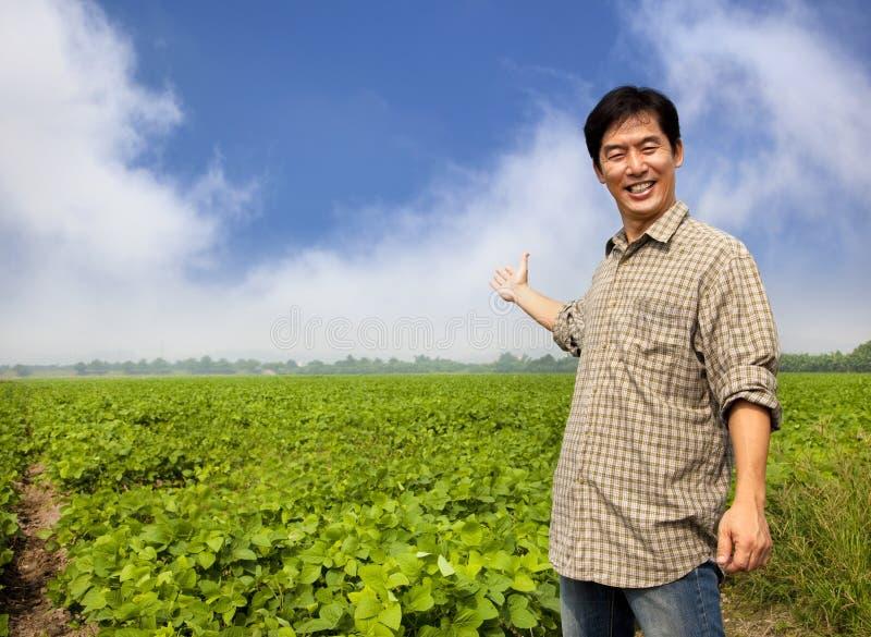 Asian farmer showing his farm royalty free stock photo