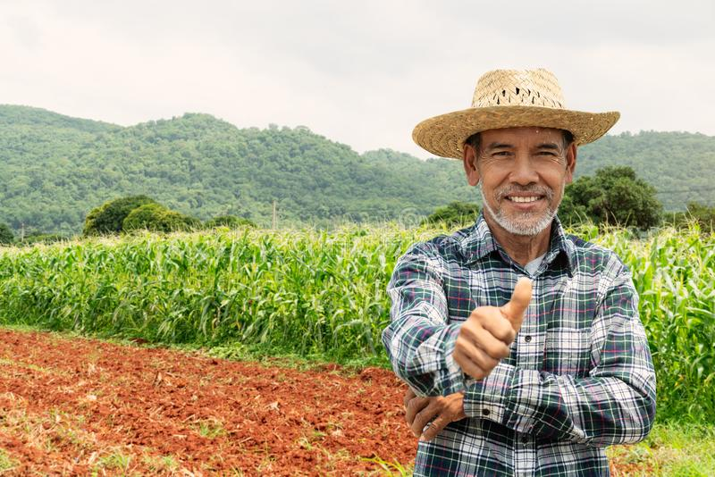 Asian farmer showing thumbs up. A portrait of a happy mature older man, an senior farmer with white beard showing thumbs up stock photos