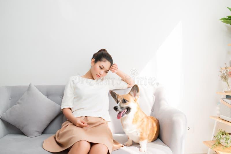 Asian female feeling sad at sofa with her Corgi dog stock photos