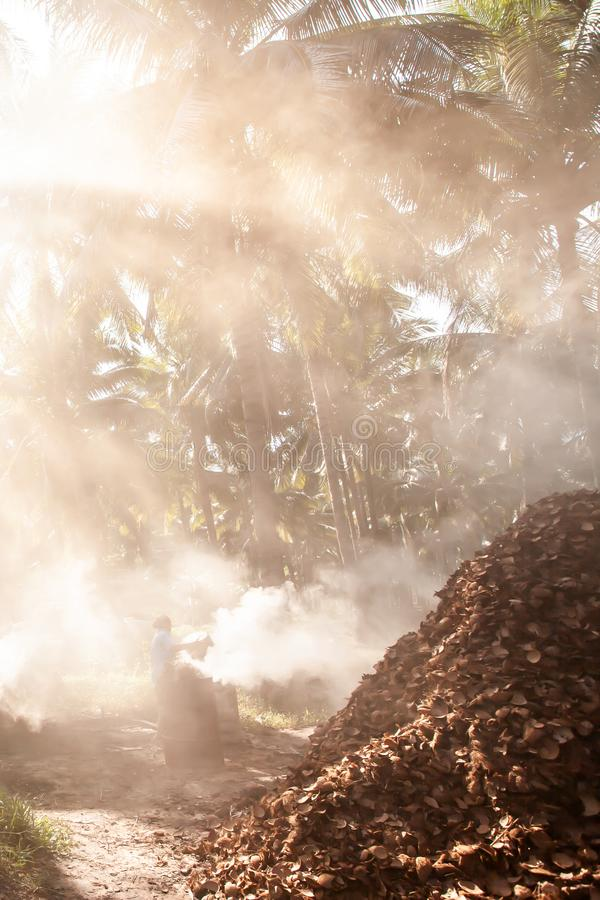 Asian female gardener burning coconut shell charcoal in coconut palm trees garden. Agriculture, simple life style in Southeast. Asian female gardener burning royalty free stock images