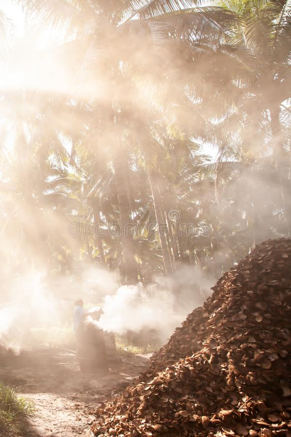Asian female gardener burning coconut shell charcoal in coconut palm trees garden. Agriculture, simple life style in Southeast. Asian female gardener burning royalty free stock photos