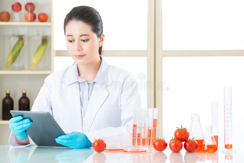 Asian female scientist research for genetic modification food. By digital tablet royalty free stock photos