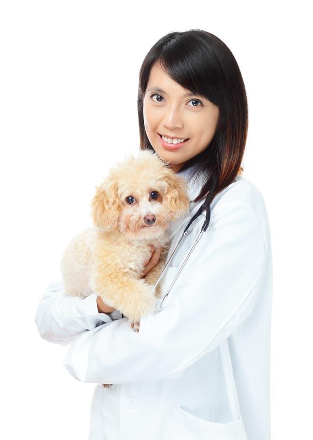 Asian Female Veterinarian Stock Photography