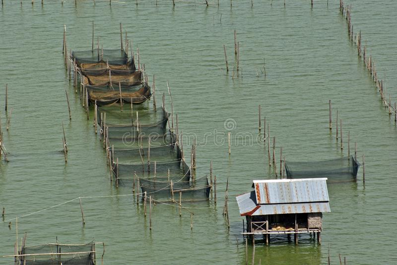 Asian fishery in Thai lake stock photography